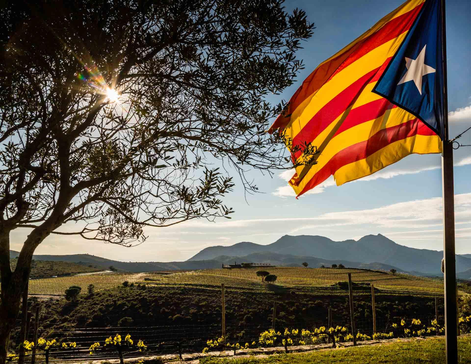 Der Wein, die Sierra und das Meer. Im Naturschutzgebiet Cap de Creus liegen drei Weingüter. Auf dem Weingut von Martin Faixó weht die katalonische Flagge / © FrontRowSociety.net, Foto: Georg Berg