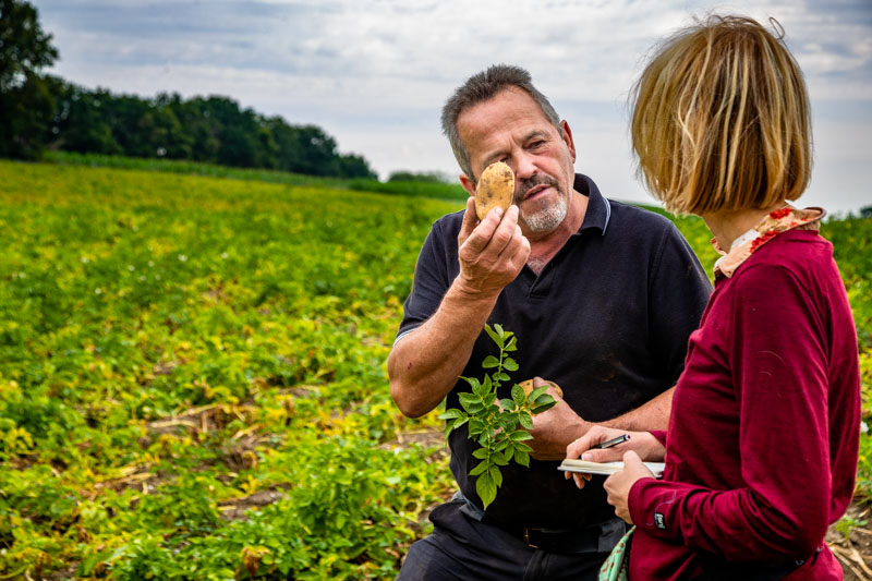 Landwirt Paul Strixner auf seinem Feld mit der reifen Frühkartoffel Juwel / © FrontRowSociety.net, Foto: Georg Berg