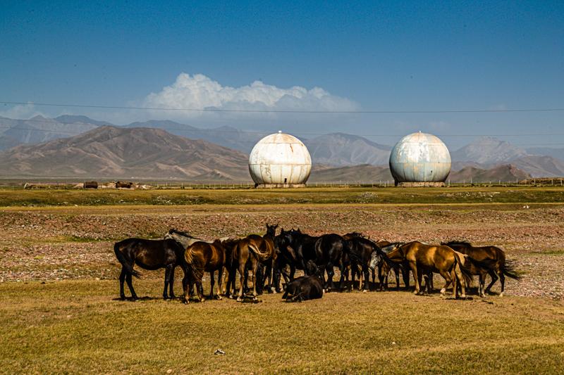Auf der Hochebene zwischen denen beiden Gebirgen Pamir und Tian Shan grasen kirgisische Pferde vor einer verlassenen sowjetischen Radarstation / © FrontRowSociety.net, Foto: Georg Berg