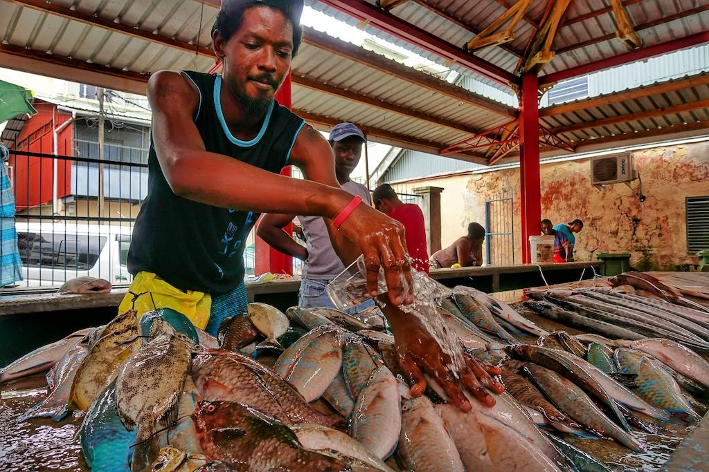 Frischer Fisch gefällig? Frühmorgens sollte der Sir Selwyn Selwyn Market besucht werden, der im Herzen Victorias liegt