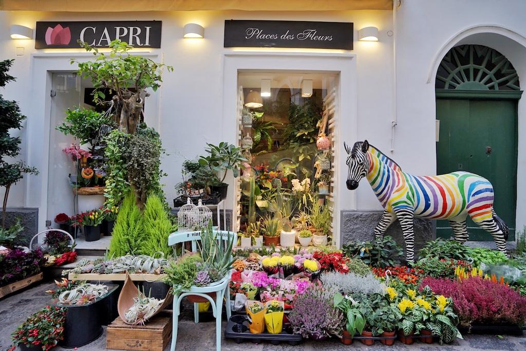 Auf Capri ist einfach alles hübsch anzusehen