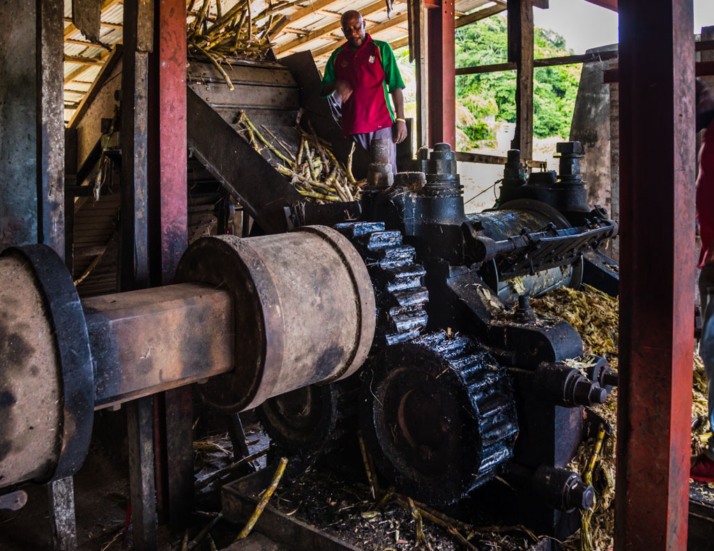Hoch oben auf der Maschine beaufsichtigt der Pressmeister die kontinuierliche Zuckerrohr-Zufuhr / © FrontRowSociety.net, Foto: Georg Berg