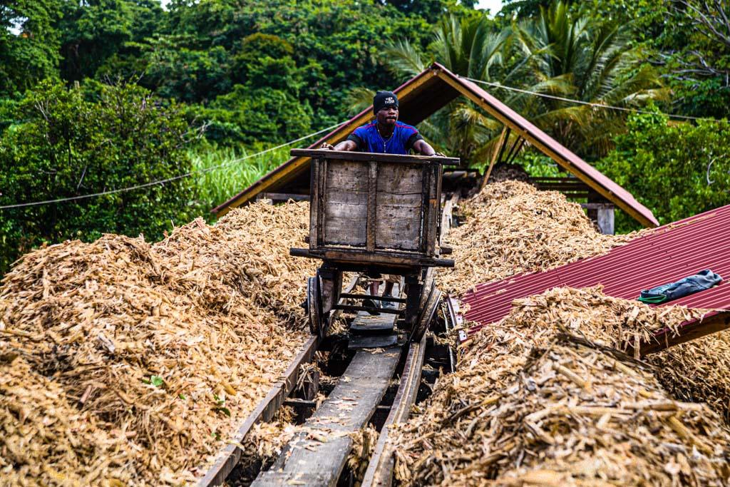 Auf der einzigen 50 Meter langen Bahnstrecke Grenadas wird die Bagasse, das ausgepresste Zuckerrohr, auf einem klapprigen Wagen über die Halde geschoben / © FrontRowSociety.net, Foto: Georg Berg