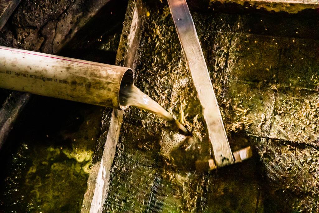 Der Zuckersaft kommt im Hauptgebäude der Manufaktur an, wo die festen Pressreste heraus gesiebt werden / © FrontRowSociety.net, Foto: Georg Berg