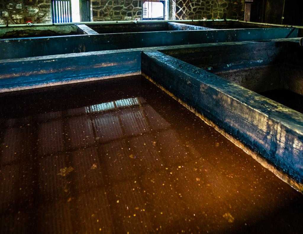 Acht Tage lang brodelt bei tropischer Raumtemperatur der gärende Zuckerrohrsirup in Betontanks / © FrontRowSociety.net, Foto: Georg Berg