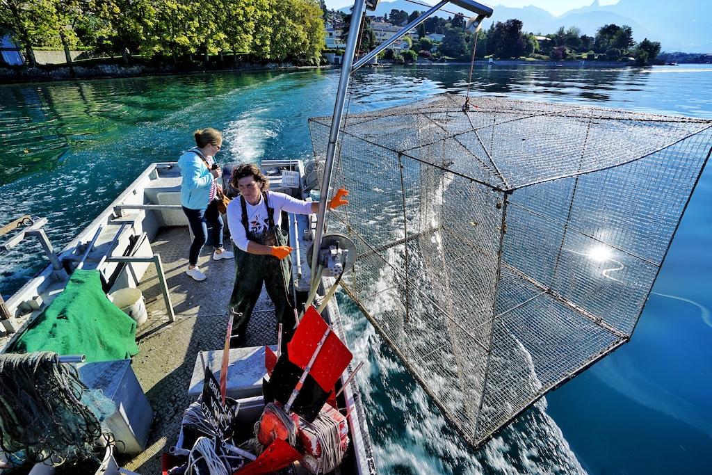 Heute Vormittag blieben die Reusen leer - das Los der Fischer - denn hier wird nachhaltig gefischt und da kommt es des Öfteren vor, dass Mal kein Fisch gefangen wird