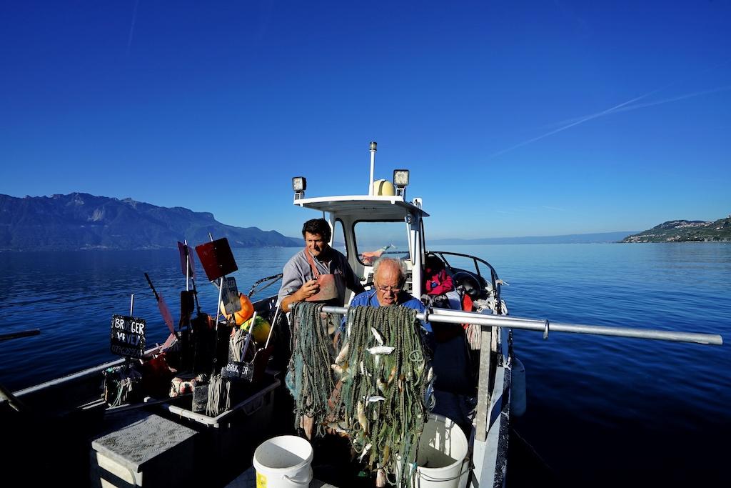 Am frühen Vormittag geht es für den Fischer Patrice Brugger ein zweites Mal auf den Genfersee