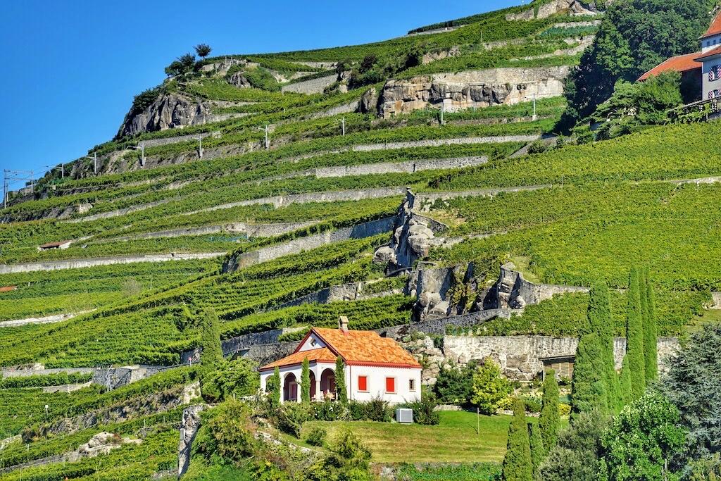 Die Terrassen ziehen sich über zirka 800 Hektar und grenzen im Osten an des Weinbaugebiet Chablais, in westlicher Richtung liegt das Weinbaugebiet La Côte