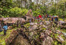 Im Dschungel Bougainvilles liegen noch immer die Wrackteile der Mitsubishi G4M, in der General Yamamoto Isoroto am 18. April 1942 abgeschossen wurde / © FrontRowSociety.net, Foto: Georg Berg