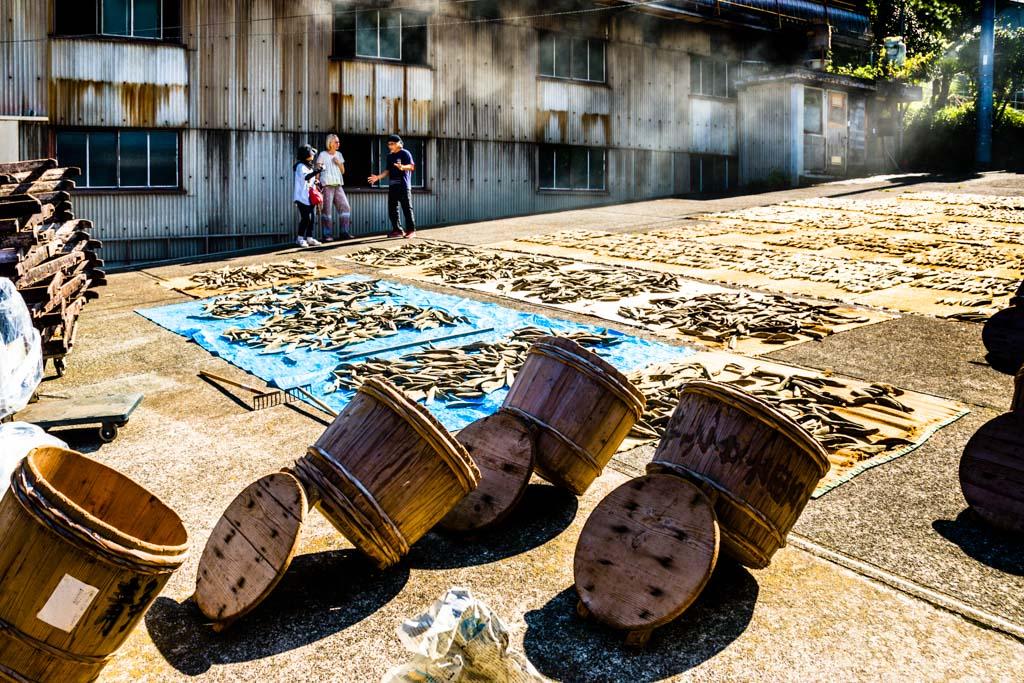 Während der Fermentation wird der Pilz immer wieder durch Sonneneinstrahlung in Schach gehalten und und die Fischfilets werden im Hof für mehrere Stunden auf Matten ausgebreitet, bevor sie wieder für weitere 20 Tage in Zedernfässern geschichtet werden / © FrontRowSociety.net, Foto: Georg Berg