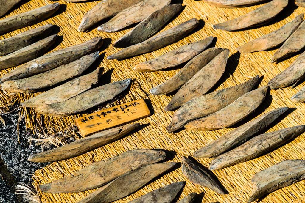 Sonne und Schimmelkultur im Wechsel geben dem Honkare-Katsuobushi den angestrebten Feuchtigkeitsgrad von unter 20 Prozent / © FrontRowSociety.net, Foto: Georg Berg