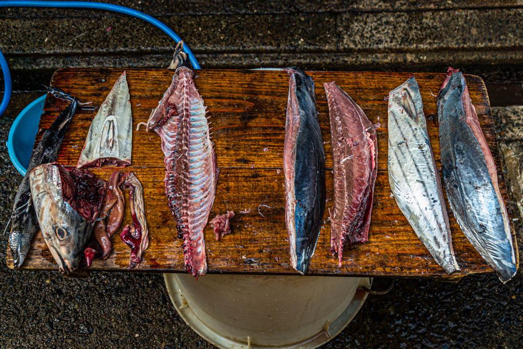 Fein säuberlich zerlegt: An den vier Filets kann man jetzt schon die spätere Form des Honkare-Katsuobushi erkennen. Durch die mehrstufige Trocknung wird das Endprodukt viel kleiner sein. Auch alle anderen Teile des Fisches werden verwertet / © FrontRowSociety.net, Foto: Georg Berg