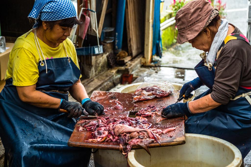 Wirklich alles wird vom Fisch verwertet. Zwei Frauen säubern sogar die Mägen der Fische, damit diese ohne Inhalt zu einer Paste weiterverarbeitet werden können / © FrontRowSociety.net, Foto: Georg Berg