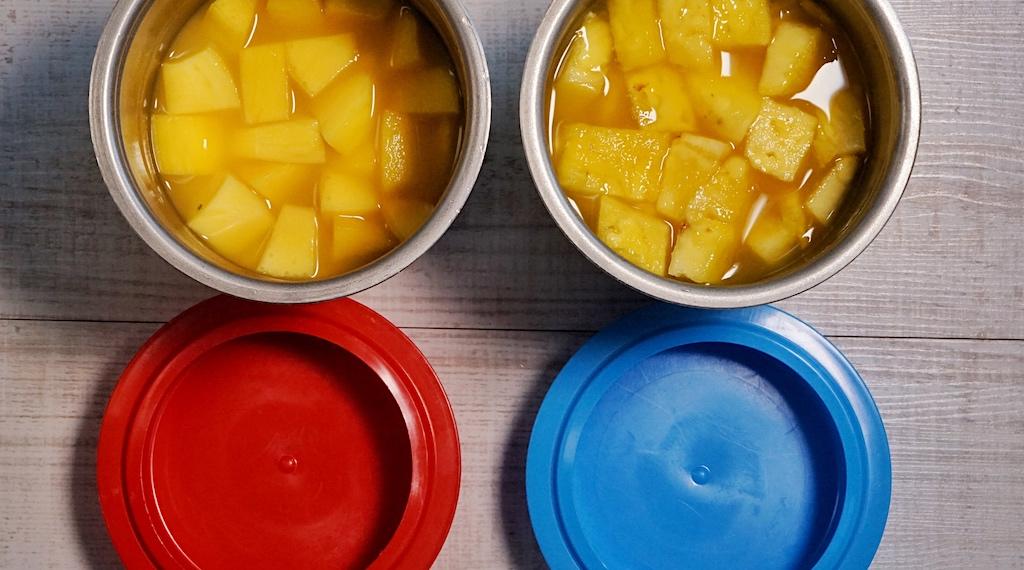 Gewünschte Lebensmittel in den Pacossierbecher geben und für 24 Stunden in den Tiefkühler stellen