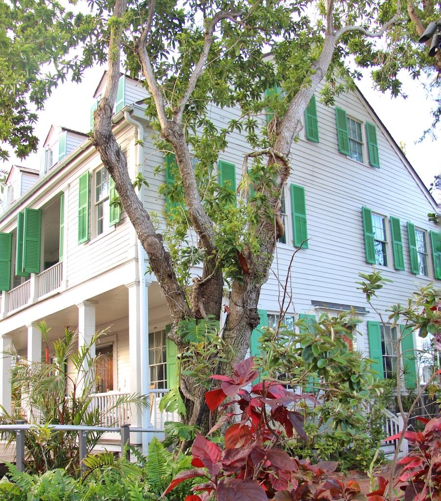 """Wie das Wohnhaus von Ernest Hemingway für Literaturfans, so ist das """"Audubon House"""" in Key West eine Pilgerstätte für Biologen"""