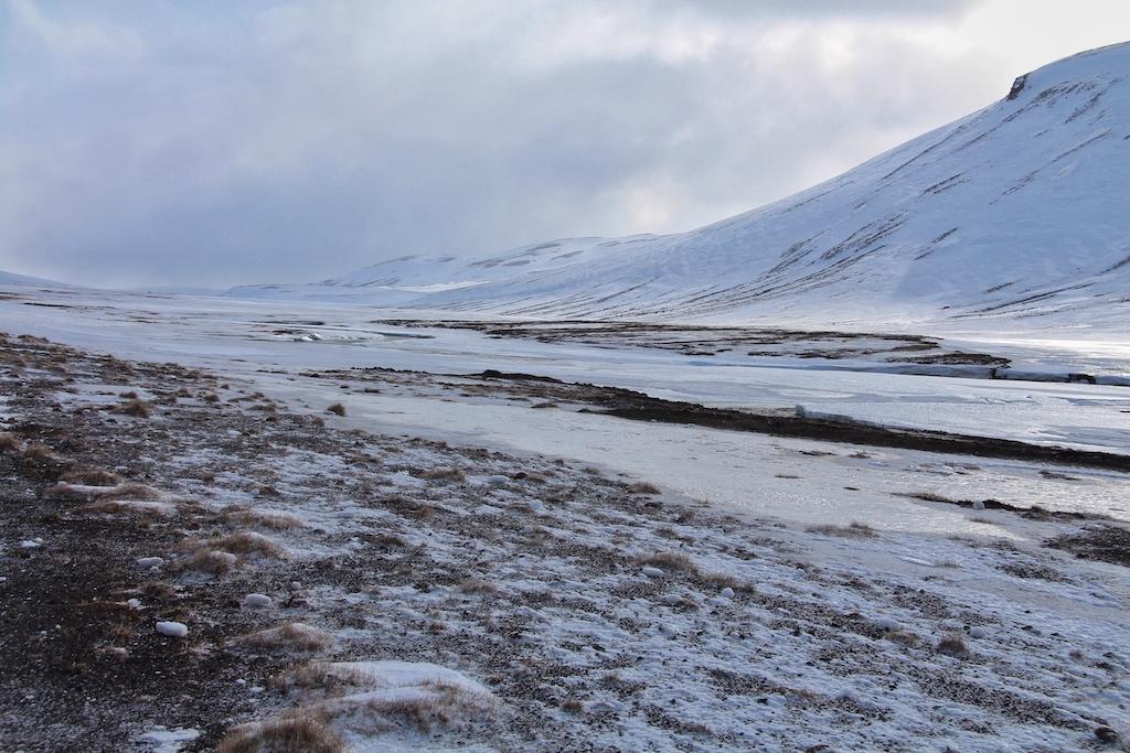 Eisglatte Straßen und starker Wind bereiten dem Busausflug nach Myvatn auf halber Strecke ein vorzeitiges spätwinterliches Ende