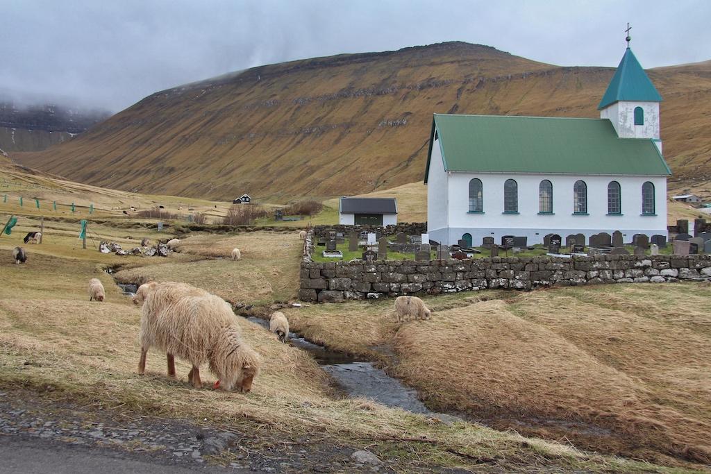 """In dem idyllischen Ort Gjogv machen die Faröer ihrem Beinamen als """"Schafsinseln"""" alle Ehre"""