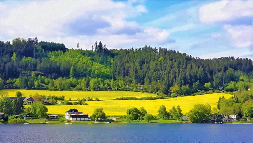 Die Bucht Alta am blauen Thüringer Meer mit gelbem Rapsfeld