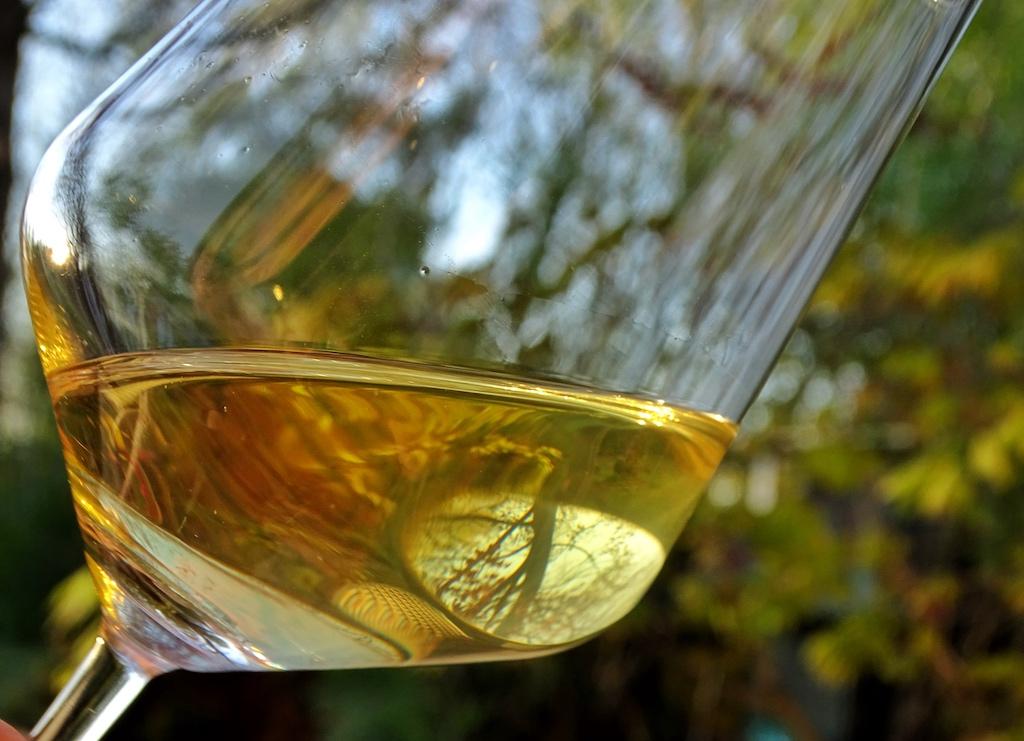 Hauptrebsorte ist die Barbera Traube. Es werden aber auch Weißweine hergestellt