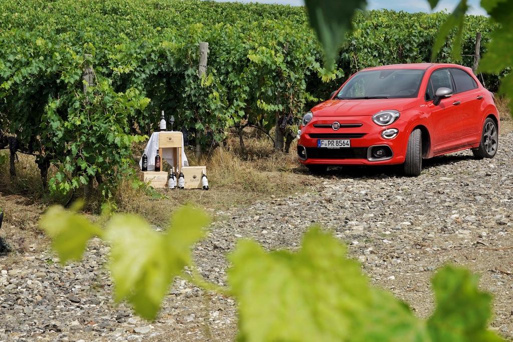 ... bis in den Weinberg in der Toskana...