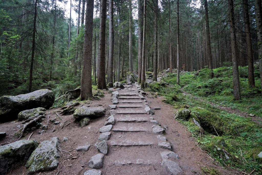 Nicht weit entfernt vom Naturhotel Moosmair befindet sich der Naturpark Riesenferner; hier sind einige sehr schöne Wanderwege zu beschreiten...