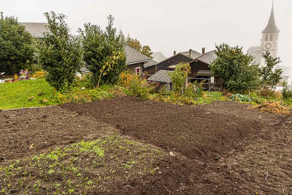 Heute wird wieder mitten im Dorf Safran angebaut / © FrontRowSociety.net, Foto: Georg Berg