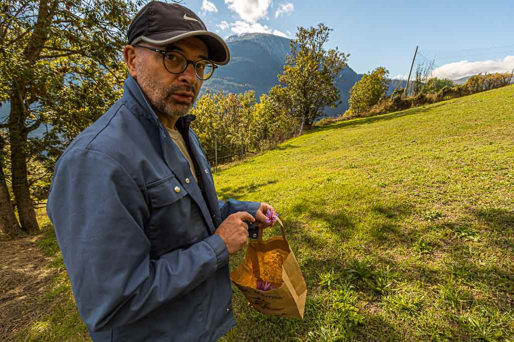 Elmar Pfammatter ist Kantonschemiker und hat gute Erfahrung mit dem Safran-Feld gemacht, das er seit Jahren nicht mehr beackert hat / © FrontRowSociety.net, Foto: Georg Berg