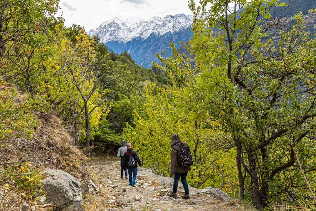 Der Reblehrpfad startet in Visperterminen auf 1.170 Metern. Oft hat man beim Durchschreiten des höchsten Weinberges Europas die Viertausender im Blick / © FrontRowSociety.net, Foto: Georg Berg