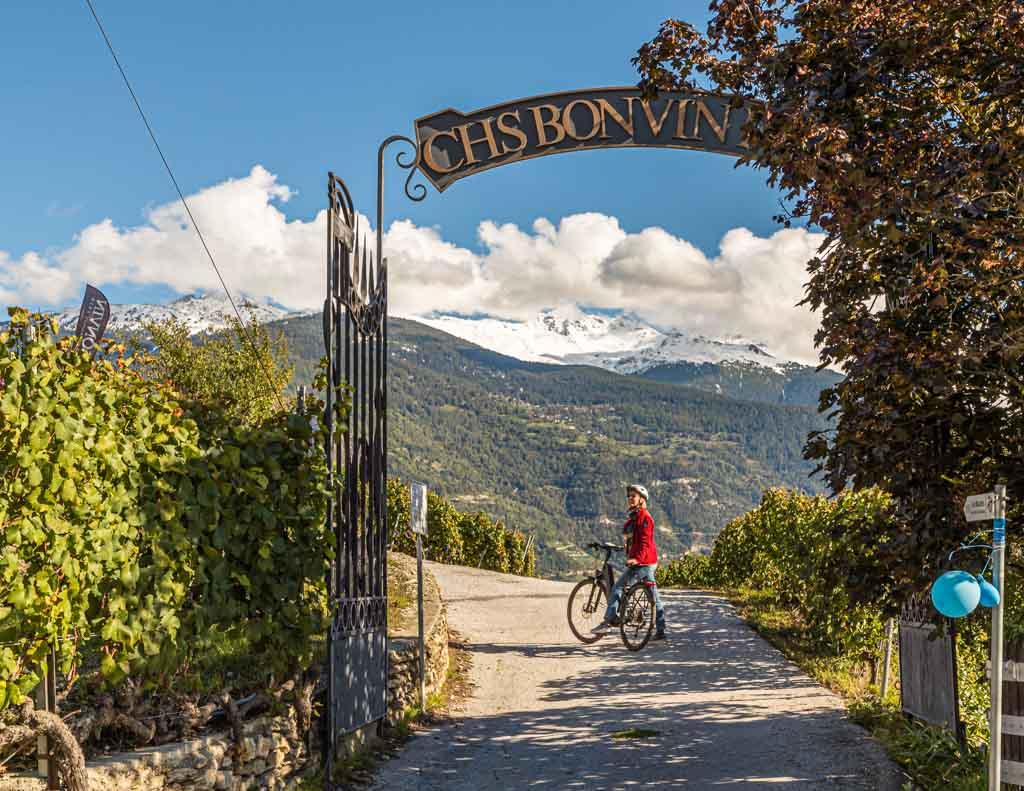 E-Bike Tour mit kulinarischen Stationen durch die steilen Weinberge der Les Celliers de Sion / © FrontRowSociety.net, Foto: Georg Berg