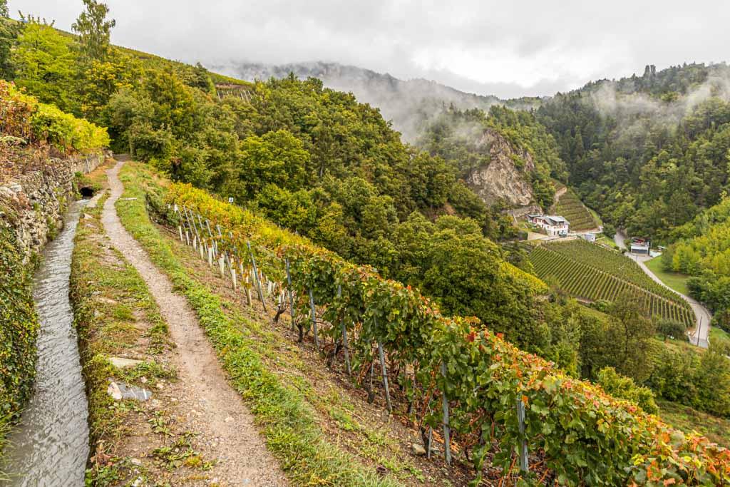 Suonen sind die Antwort der Walliser auf das extrem trockene Mikroklima im Rhonetal. So können Bauern und Winzer die Bewässerung ihrer Felder sicherstellen / © FrontRowSociety.net, Foto: Georg Berg