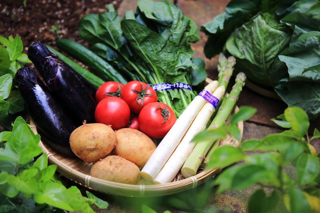 """Das """"Akashi Shoten"""" Gemüse & Früchte Set aus Kyoto"""