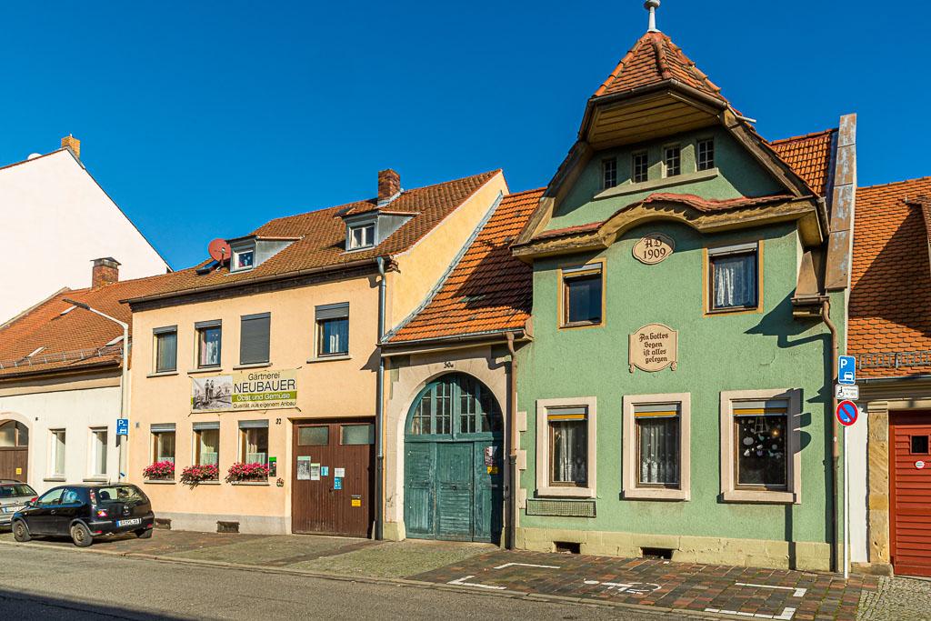 """Um 1900 gab es noch über 500 Gärtnerbetriebe in der Stadt. Heute sind es nur noch 18 Gärtnereien, die sich unter der Marke """"Gutes aus Bamberg"""" zusammengeschlossen haben / © FrontRowSociety.net, Foto: Georg Berg"""