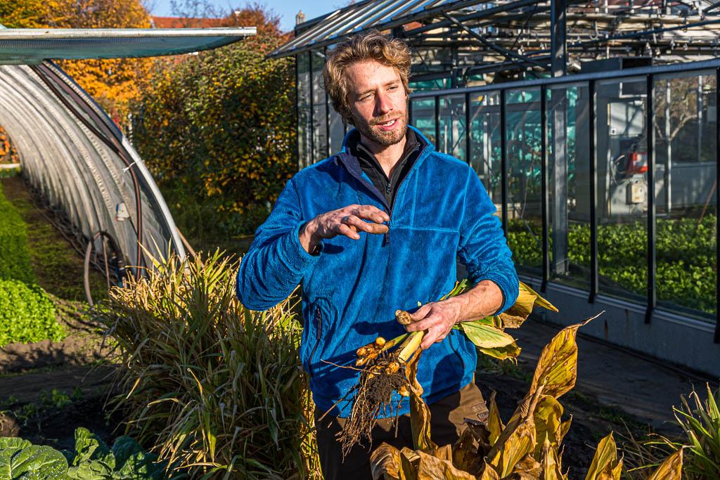 Sebastian Niedermaier ist Gärtner in 13. Generation. Neben dem Anbau von Bio-Gemüse hat er gemeinsam mit seinem Vater den Erhalt der alten Bamberger Sorten zur Aufgabe gemacht. Hier hält er frisch geerntete Kurkumawurzel in der Hand / © FrontRowSociety.net, Foto: Georg Berg