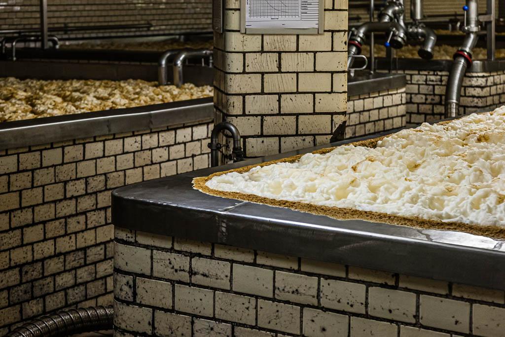 Offene Biergärung in der Brauerei Landskron in Görlitz / © FrontRowSociety.net, Foto: Georg Berg