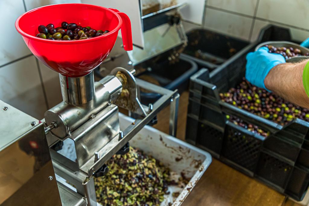 Die getrockneten und gereinigte Oliven werden zerkleinert / © FrontRowSociety.net, Foto: Georg Berg