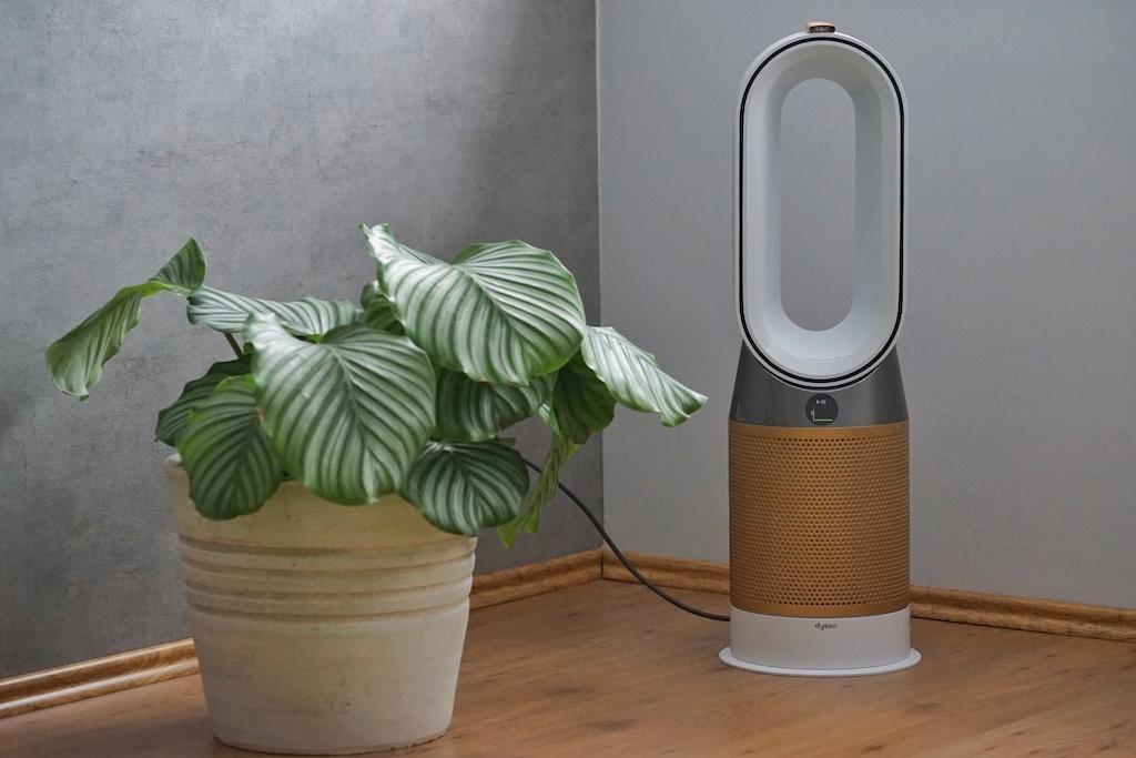 Der Luftreiniger muss nicht in der Ecke stehen, denn er kann sich fast um 360 Grad drehen und so den gesamten Raum gleichmäßig erreichen