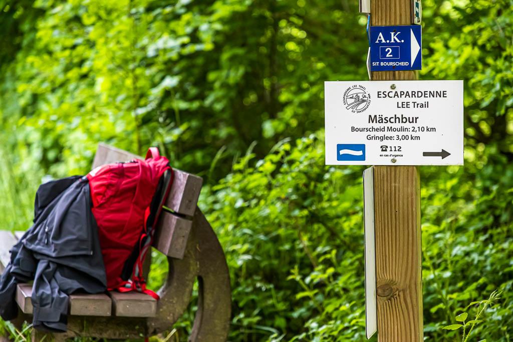 Der erste Steilanstieg aus dem Tal der Sauer ist geschafft. Das Zeichen der weißen Welle auf blauem Grund ist das offizielle Zeichen des Trails / © FrontRowSociety.net, Foto: Georg Berg