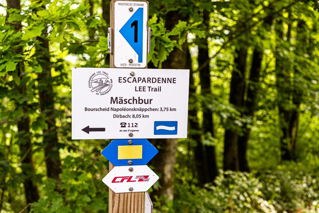 """Wandern von Bahnhof zu Bahnhof ist gut ausgeschildert in Luxemburg. Das untere Schild """"CFL"""" ist ein Hinweis darauf, dass die Route auch über einen Bahnhof führt. Im ganzen Land gibt es diese CFL-Wanderwege mit einer Bahnstation am Anfang und am Ende. So kann man einfach einsteigen und kostenlos zurück zum Ausgangspunkt fahren / © FrontRowSociety.net, Foto: Georg Berg"""