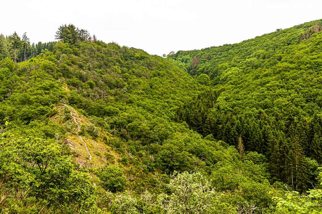 Der Molberlee Grat. Hier führt ein schmaler Pfad rund 500 Meter lang über bröseliges Schiefergestein. Es geht, auch wenn das Bild es nicht so zeigt, recht steil zu beiden Seiten hinab / © FrontRowSociety.net, Foto: Georg Berg