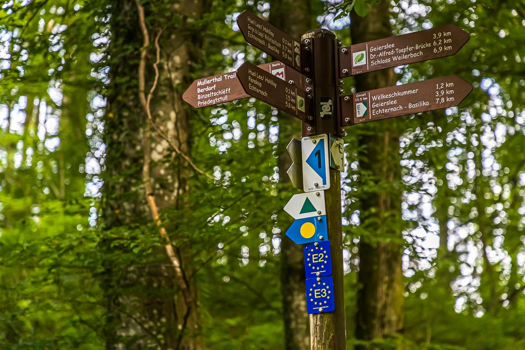 Kleiner Schilderwald im Müllerthal. Der Müllerthal Trail setzt sich aus drei Schlaufen zusammen. Sie sind miteinander verbunden und lassen sich auch separat gehen. Um den Überblick zu behalten, ist auch eine Wanderapp hilfreich / © FrontRowSociety.net, Foto: Georg Berg