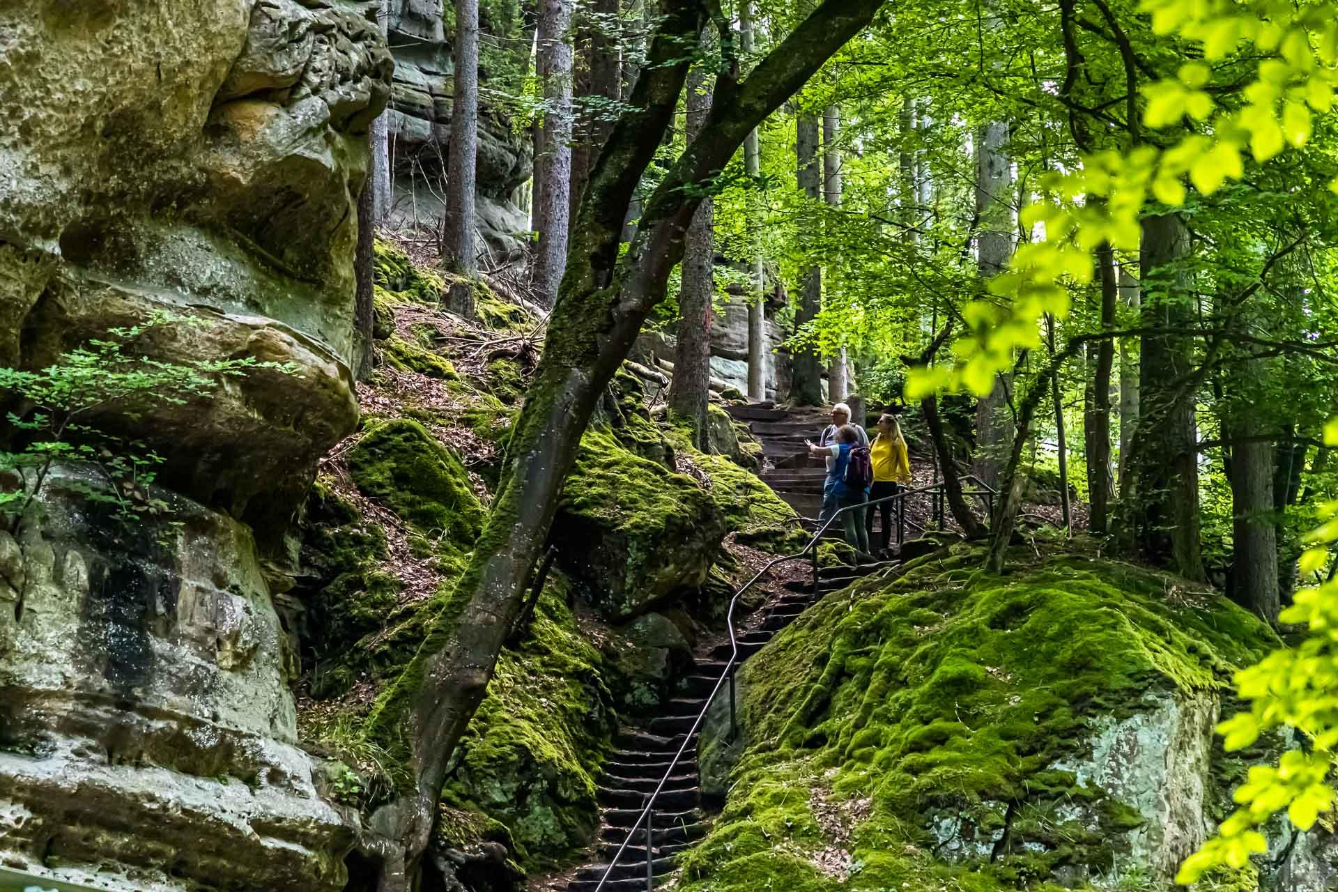 Das Müllerthal ist bekannt für seine Felsformationen aus Sandstein / © FrontRowSociety.net, Foto: Georg Berg