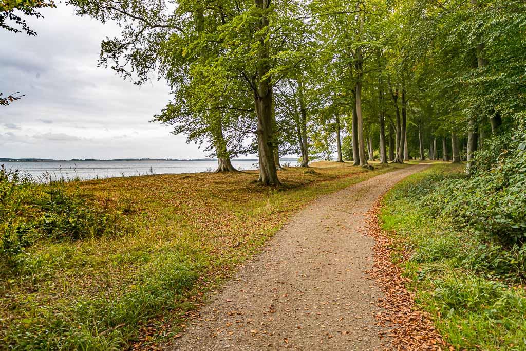 Der Wald von Norreskoven. Auf dem Wanderweg ist man oft allein unterwegs. Abgesehen von zwei Brückenquerungen hat man wenig Asphalt unter den Füßen / © FrontRowSociety.net, Foto: Georg Berg
