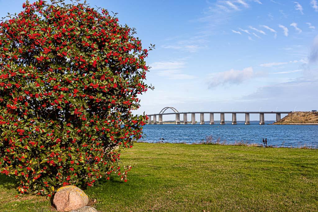 Die Langeland-Brücke verbindet Langeland mit der kleinen Insel Siø und damit über Täsinge mit der Insel Fünen / © FrontRowSociety.net, Foto: Georg Berg