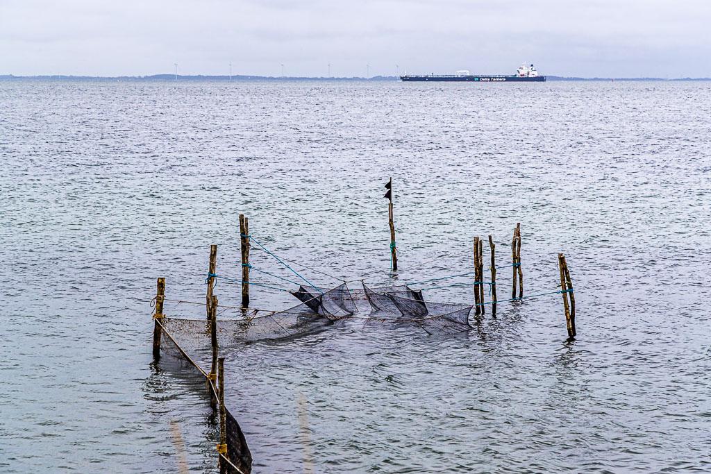 """""""Schiffe gucken"""" geht sehr gut auf diesem Abschnitt der Wanderung von Spodsbjerg Richtung Tranekær / © FrontRowSociety.net, Foto: Georg Berg"""