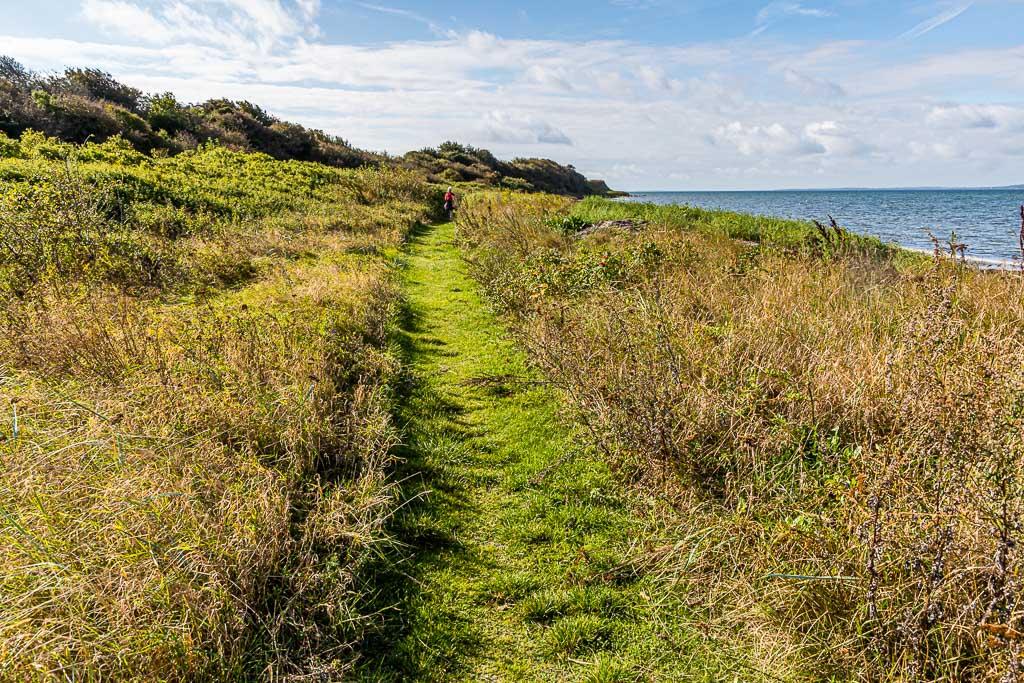 Wanderweg mit Meeresrauschen. Rund 15 Kilometer, der insgesamt 20 Kilometer von Lohals nach Tranekær verlaufen direkt an der Küste / © FrontRowSociety.net, Foto: Georg Berg